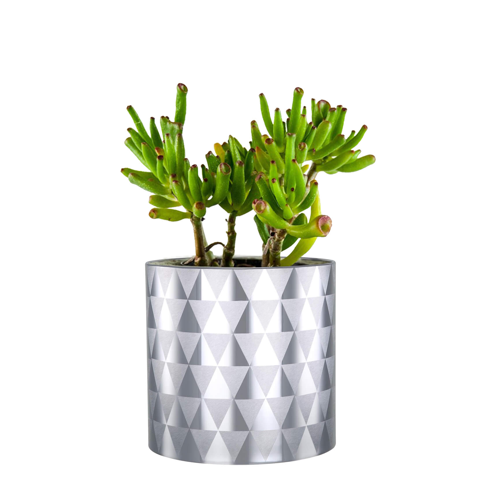 Top Office Planters Designs
